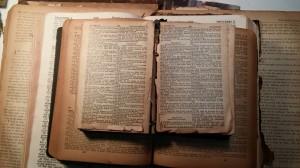 bibles1